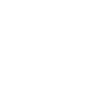 logo-guzzini